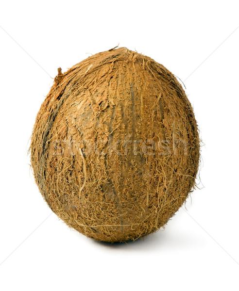 Kokosnuss ganze weiß Gesundheit Palmen Anlage Stock foto © Ximinez