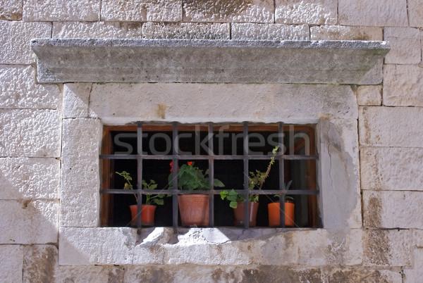 Esaret pot bitkiler arkasında paslı demir Stok fotoğraf © Ximinez