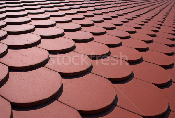 Roof tiles Stock photo © Ximinez