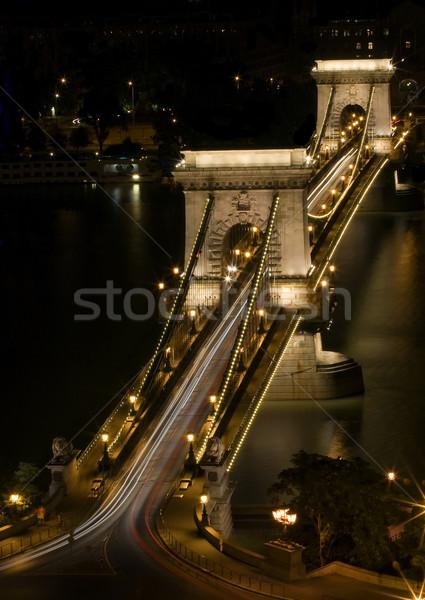 Nacht erschossen Kette Brücke Budapest Ungarn Stock foto © Ximinez