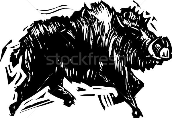 кабан стиль изображение борьбе Сток-фото © xochicalco