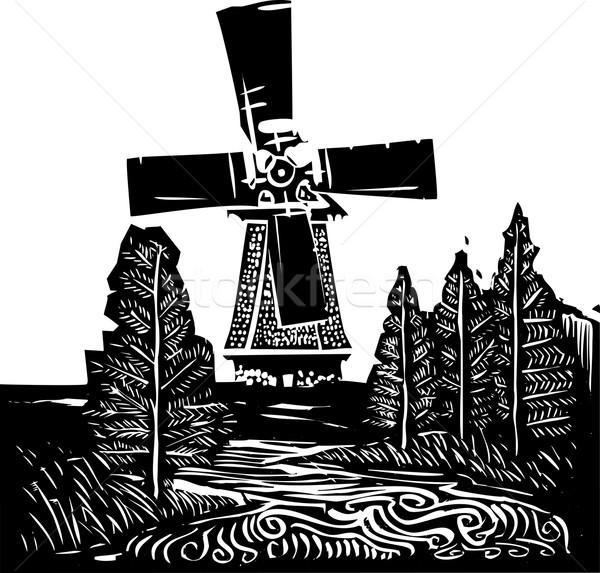 Fırıldak manzara stil görüntü eski hollanda Stok fotoğraf © xochicalco