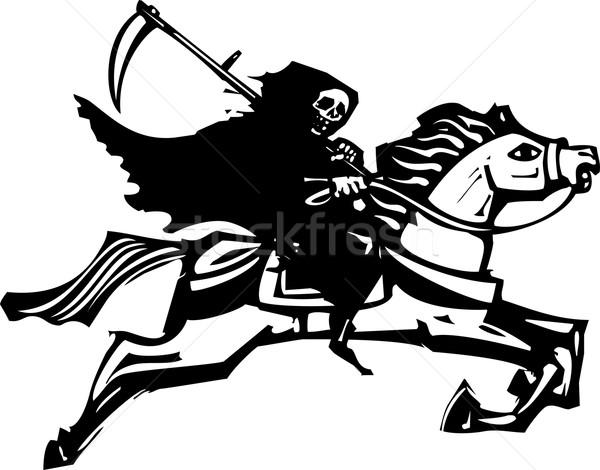 Morte cavalo branco estilo imagem equitação cavalo Foto stock © xochicalco