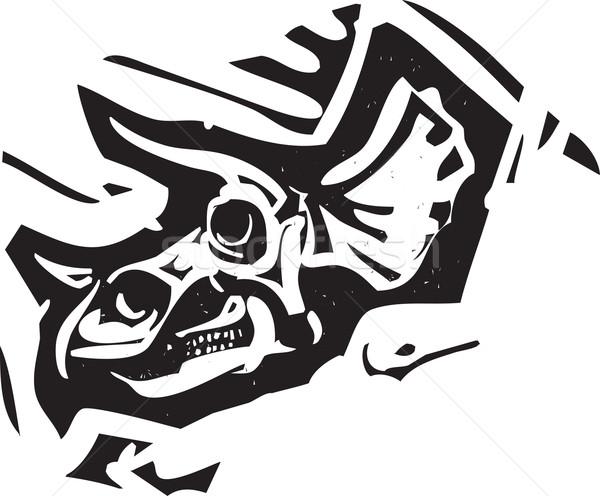 Fósil cráneo estilo imagen dinosaurio naturaleza Foto stock © xochicalco