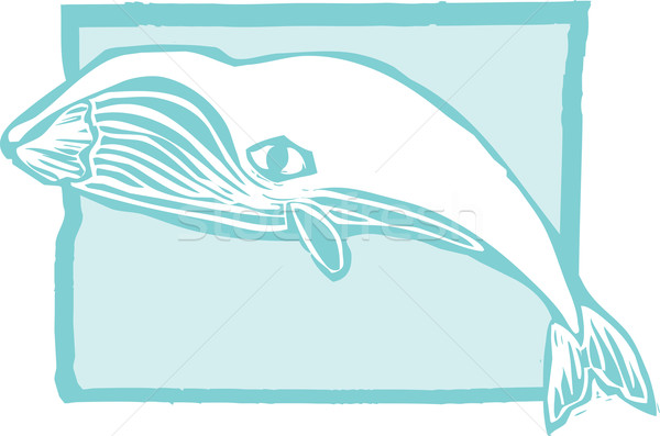 Bálna klasszikus stílus kép víz óceán Stock fotó © xochicalco