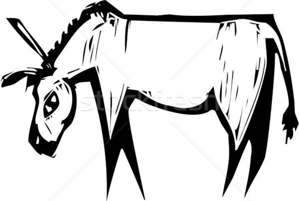 Asino semplice espressionista immagine lavoro cavallo Foto d'archivio © xochicalco