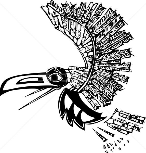 Vliegen raaf mythisch gerenderd noordwesten kust Stockfoto © xochicalco