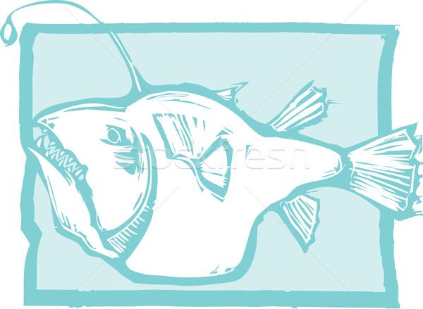 Anglerfish Stock photo © xochicalco
