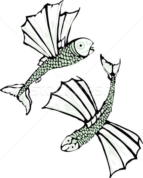 два Flying рыбы оказанный нуля совета Сток-фото © xochicalco