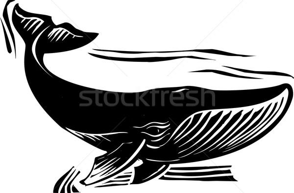 Bálna stílus víz óceán klasszikus Stock fotó © xochicalco