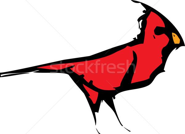 только стиль изображение красный птица зима Сток-фото © xochicalco