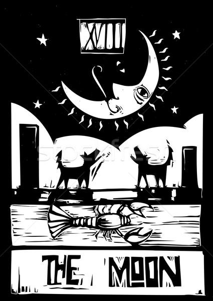 Księżyc tarot stylu karty przestrzeni noc Zdjęcia stock © xochicalco