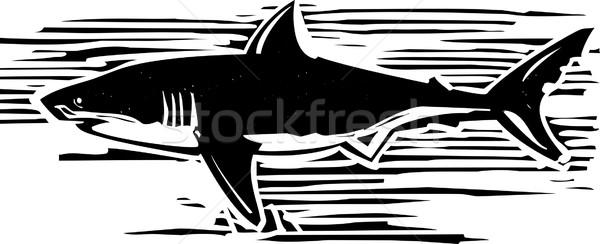 Branco estilo imagem tubarão água Foto stock © xochicalco