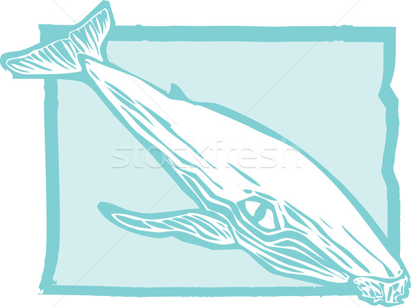 Humpback Whale 1 Stock photo © xochicalco
