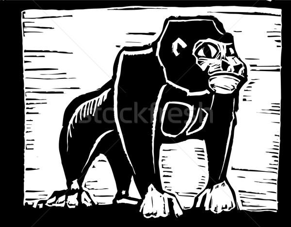 African Gorilla  Stock photo © xochicalco