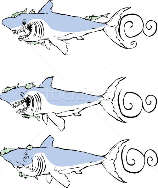 Three great white sharks Stock photo © xochicalco