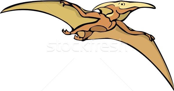 Pterosaur Dinosaur A Stock photo © xochicalco