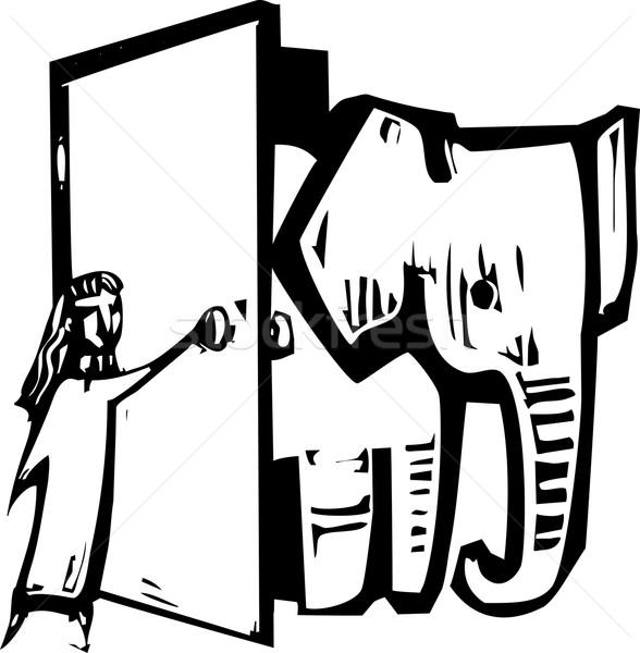 слон двери девушки открытие женщину Финансы Сток-фото © xochicalco