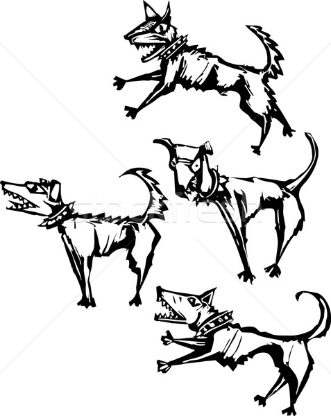 Four angry scary dogs Stock photo © xochicalco