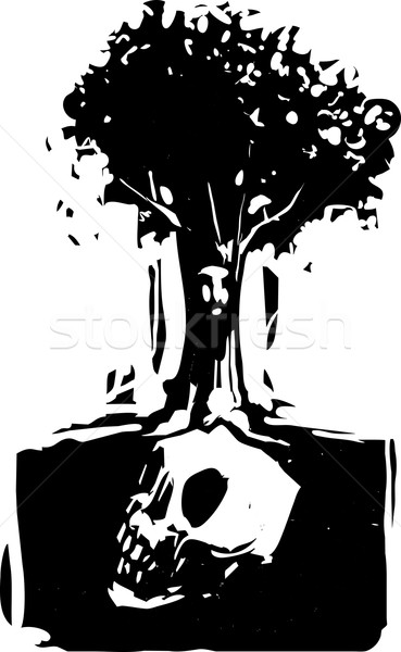 Zdjęcia stock: Czaszki · drzewo · stylu · obraz · twarz · korzenie