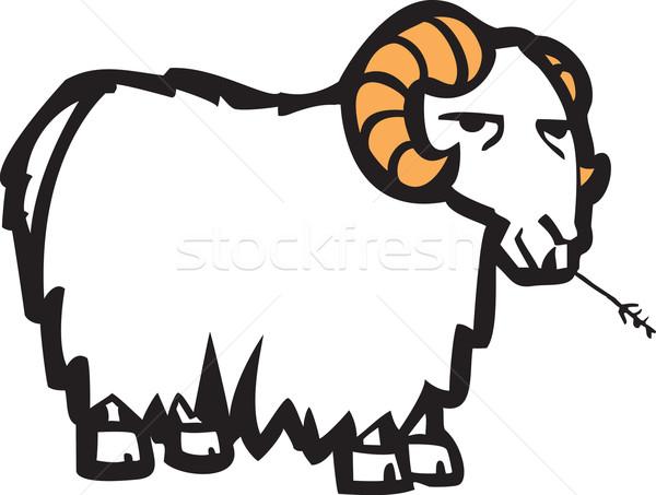 Goat Stock photo © xochicalco