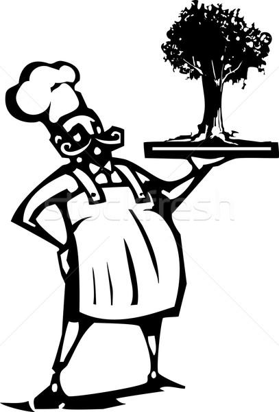 Chef with Tree Stock photo © xochicalco