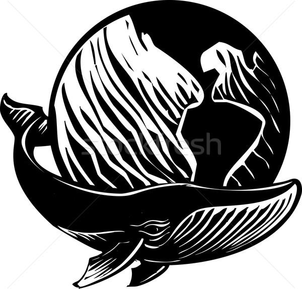 Whale World Stock photo © xochicalco