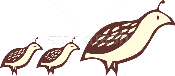 Partridge and Chicks Stock photo © xochicalco