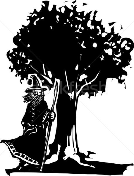 Wizard ad Tree Stock photo © xochicalco