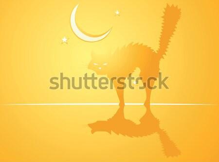 Halloween Cat Background Stock photo © xochicalco