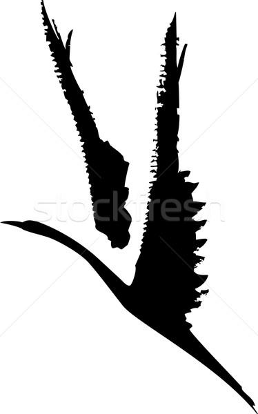 áspero pássaro vôo nosso lavar estilo Foto stock © xochicalco