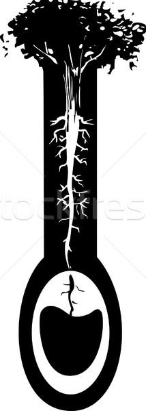 Potável árvore estilo imagem raízes como Foto stock © xochicalco