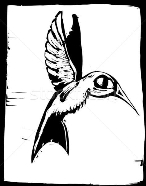 Hummingbird полет крыльями вектора живая природа клюв Сток-фото © xochicalco