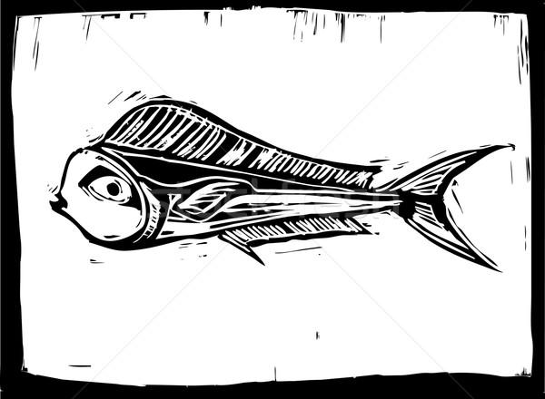 Poissons poissons tropicaux style image eau école Photo stock © xochicalco