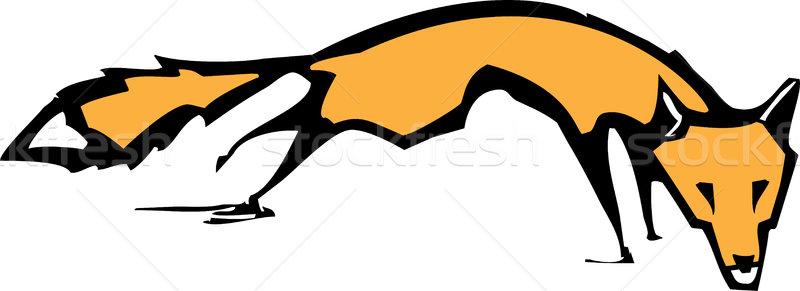 Running Fox Stock photo © xochicalco