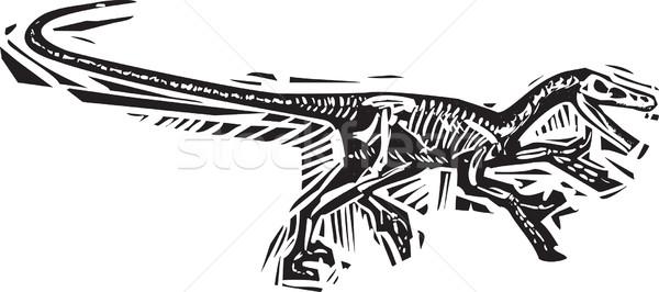 Corrida fóssil estilo imagem natureza Foto stock © xochicalco