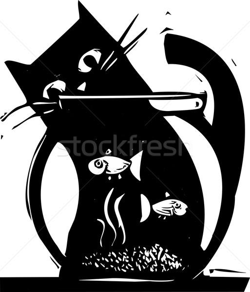 Aquário gato preto assistindo peixe gato brinquedo Foto stock © xochicalco