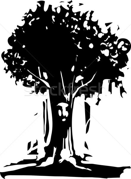 лице дерево дух стиль изображение природы Сток-фото © xochicalco