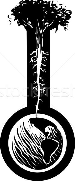 Coluna terra estilo imagem árvore raízes Foto stock © xochicalco