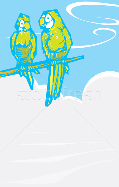 Parrots by foggy sea Stock photo © xochicalco