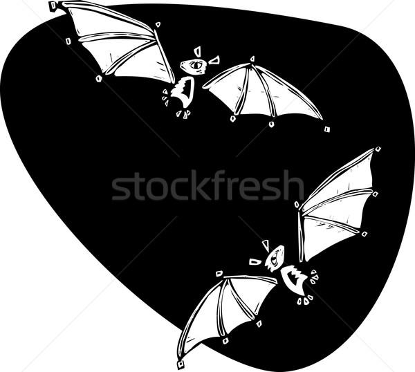 Two bats flying Stock photo © xochicalco