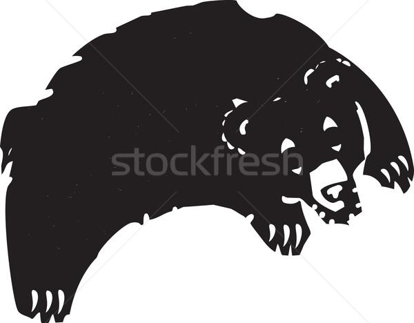 Jumping Bear Stock photo © xochicalco