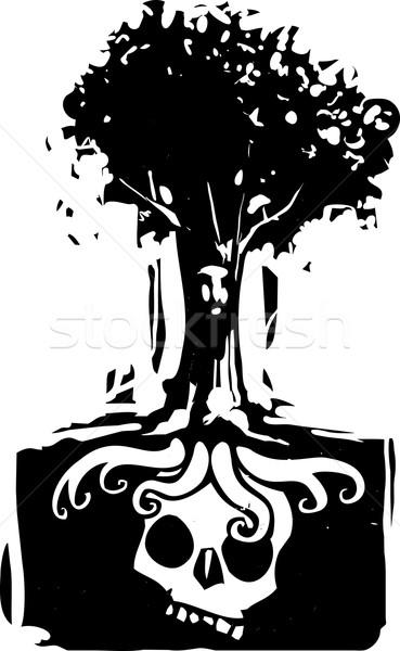 Cráneo árbol raíces estilo imagen cara Foto stock © xochicalco
