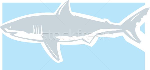Branco limpar gráfico imagem tubarão Foto stock © xochicalco