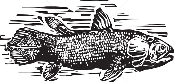 Style image vie fossile poissons océan Photo stock © xochicalco