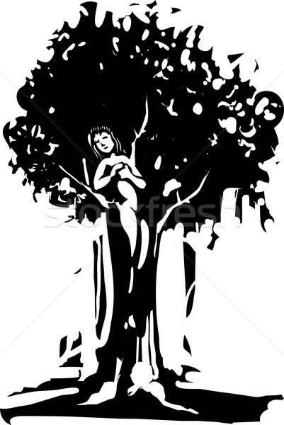 Dryad Stock photo © xochicalco