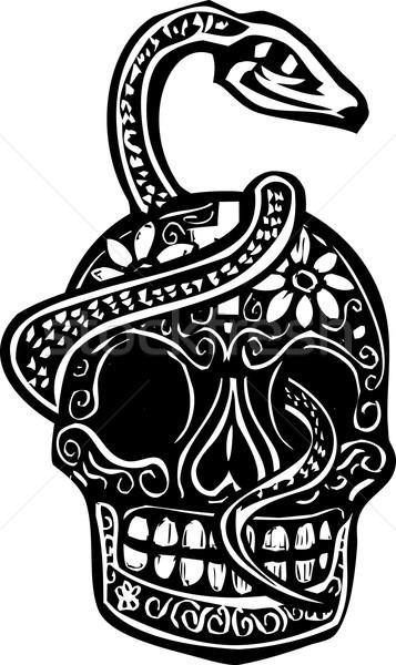 Snake and Skull Stock photo © xochicalco