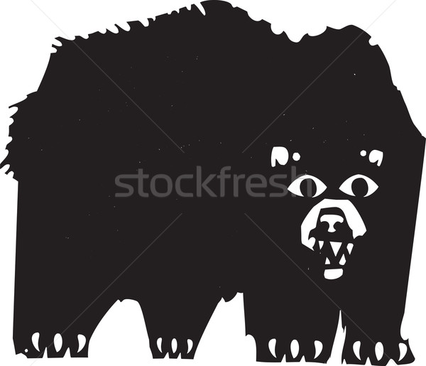 Bear Stock photo © xochicalco