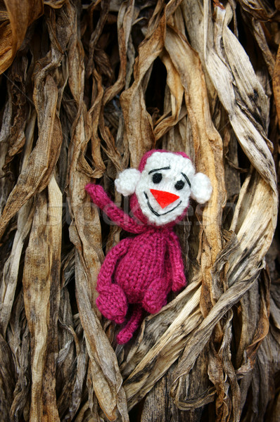 monkey, symbol,  intelligent, handmade, knitted toy Stock photo © xuanhuongho
