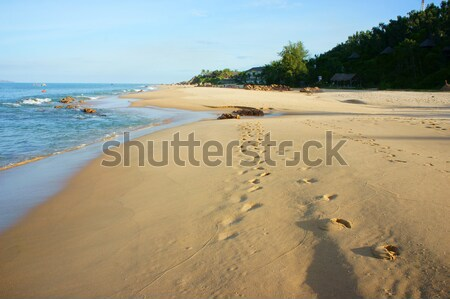 Vietnam beach, Viet Nam seashore, landscape Stock photo © xuanhuongho